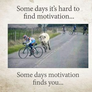 buyer motivation Consumer behavior motivation the study of motivation refers to all the processes that drives in a person to perceive a a buyer has several motives and each.