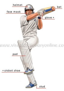 cricket-player-batsman