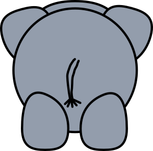elephant-rear-hi